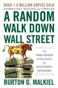 a-random-walk-down-wall-street